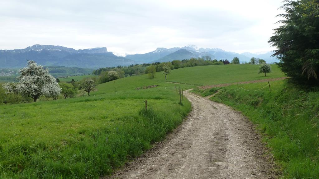 le Parmelan et la Tournette depuis les Burnets